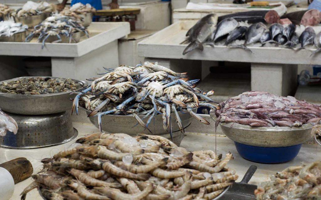 سمك وروبيان
