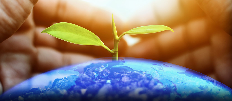 موضوع عن البيئة الصحية التعريف نصائح للمحافظة على البيئة الصحية ماي بيوت