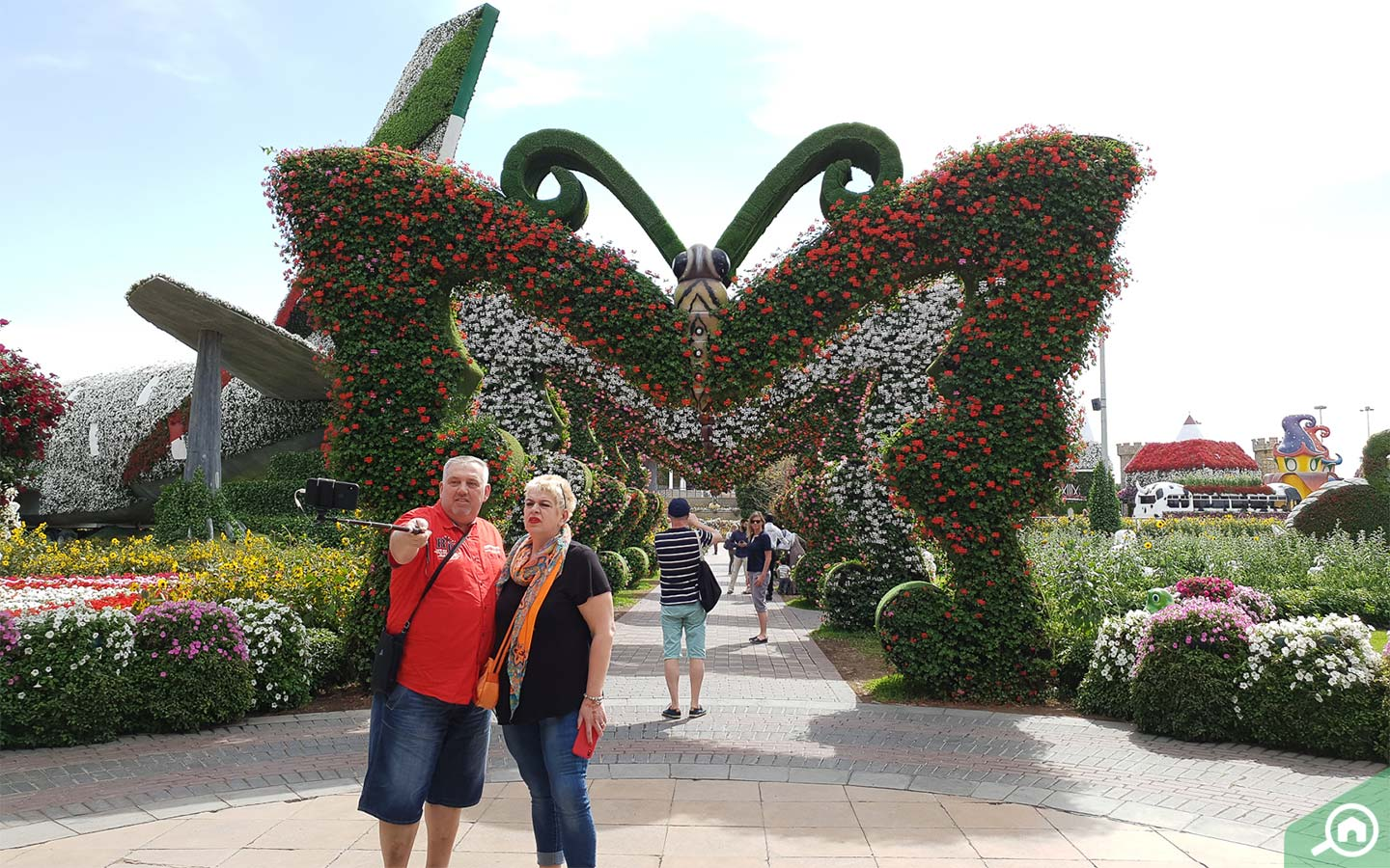 The Butterfly Passage at the Dubai Miracle Garden
