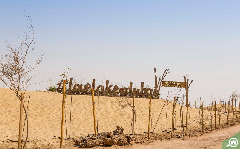 Love lake in Al Qudra invites all lovey dovey couples for fun.