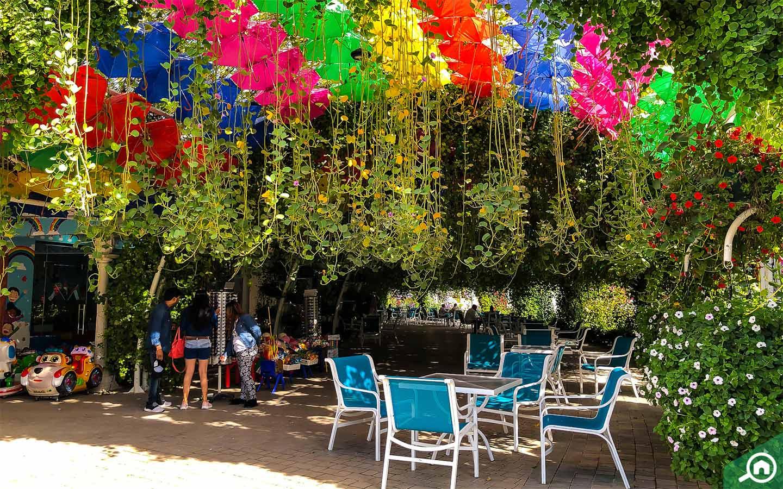Umbrella Passage at the Dubai Miracle Garden