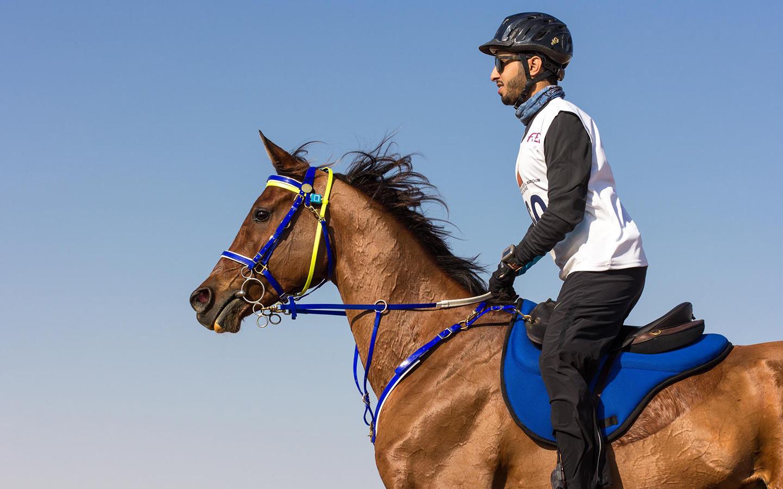شخص يمتطي حصان