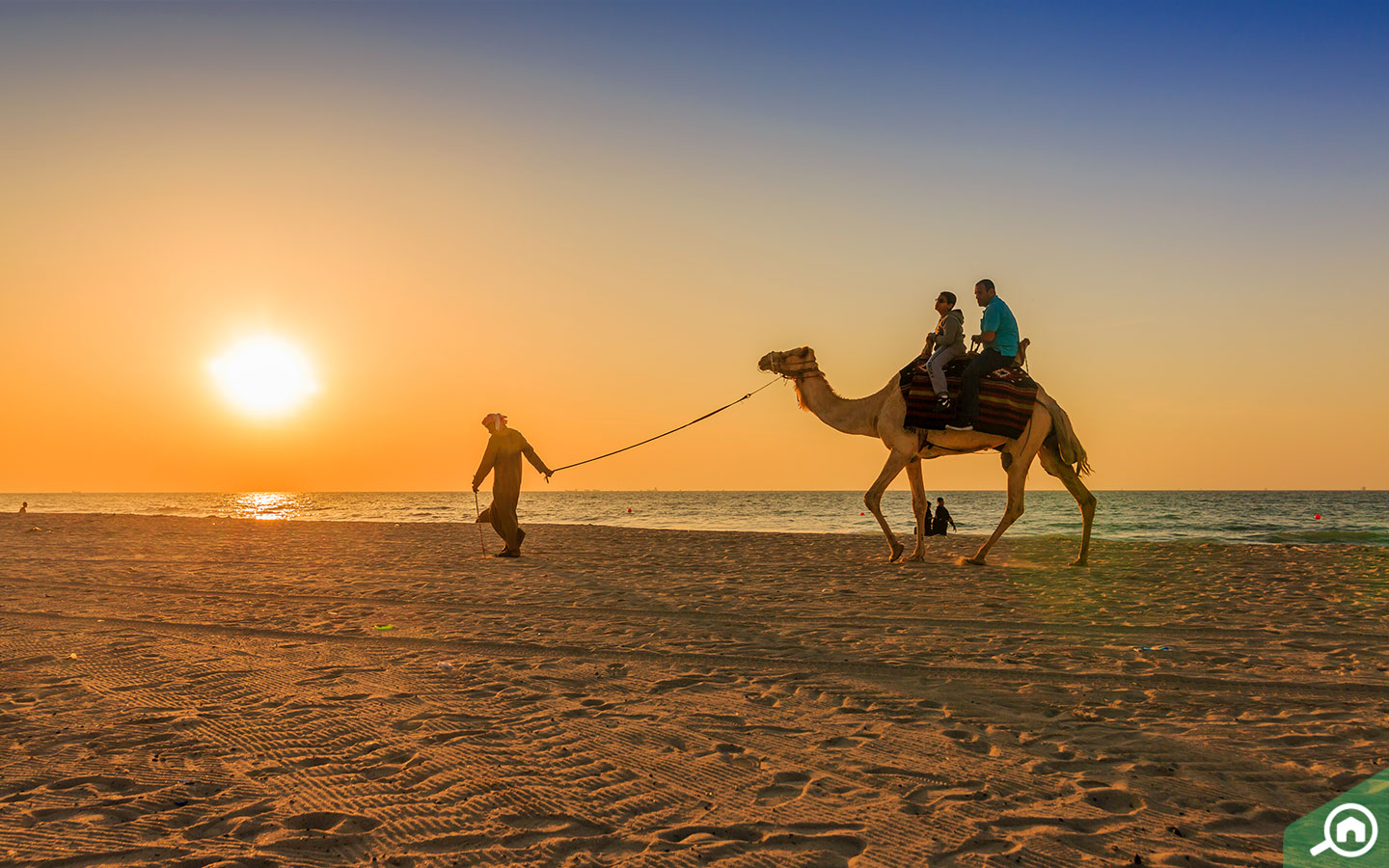Why Living in Ajman is Perfect if You Work in Dubai - MyBayut