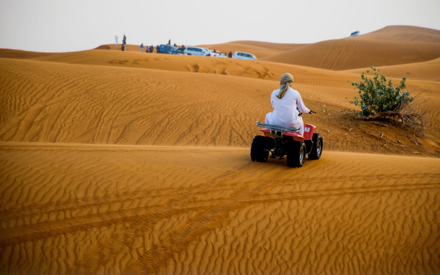 Bashing dunes at the Empty Quarter is another one of the fun free things to do in Abu Dhabi.