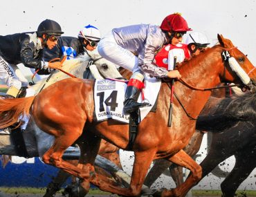 jockeys competing at Dubai World Cup