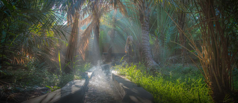 Falaj Irrigation system at Al Ain Oasis
