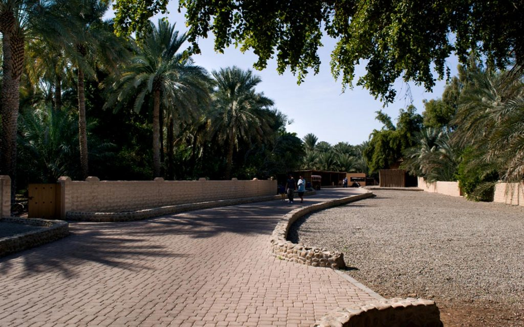 Wide open pathways of the oasis