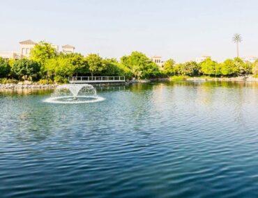 بحيرة في البراري دبي