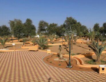 Al Hayer Oasis