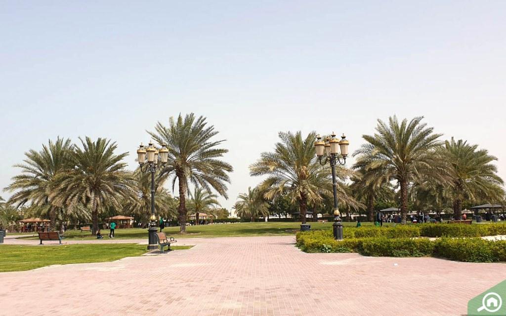 Al Jurf is a visit park in Ajman