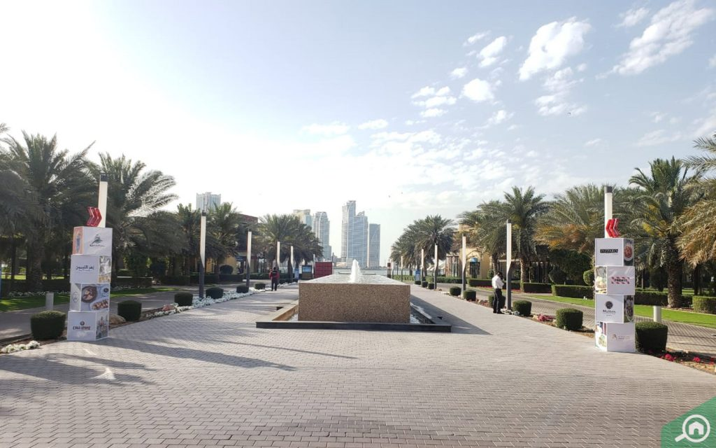 Rows of date trees at the sides of the walkways at Al Majaz Park