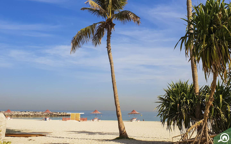 Beach at Al Mamzar Beach Park