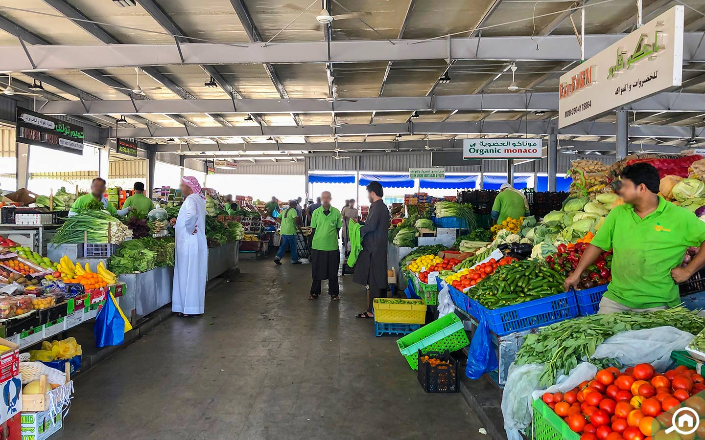 View of Al Mina fruit and vegetable souk
