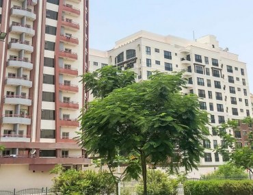 buildings with flats for rent in Al Nahda Dubai