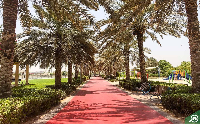 Walkway in Al Nahda Pond Park