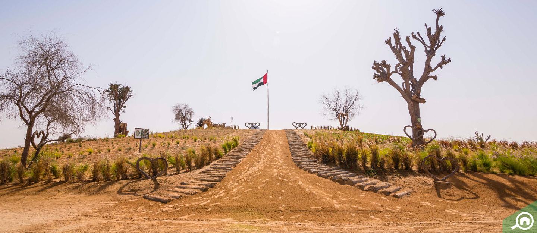 the road to Al Qudra Lake
