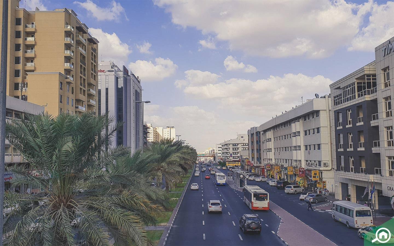 شارع في القصيص