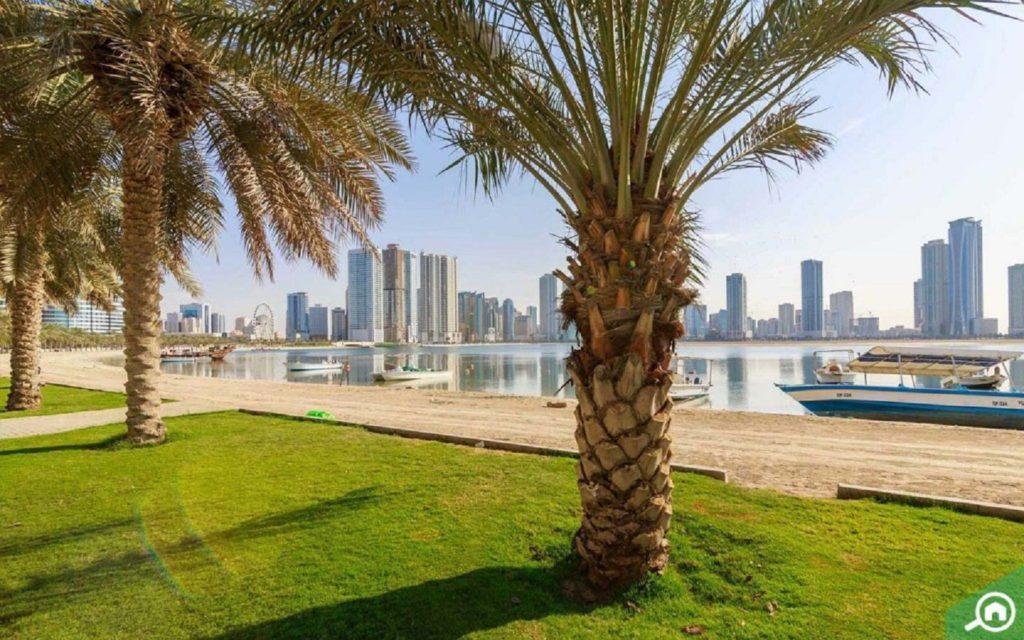 Waterfront apartment buildings for rent in Al Khan, Sharjah
