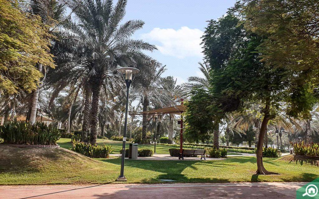 benches at Al Qusais Pond Park