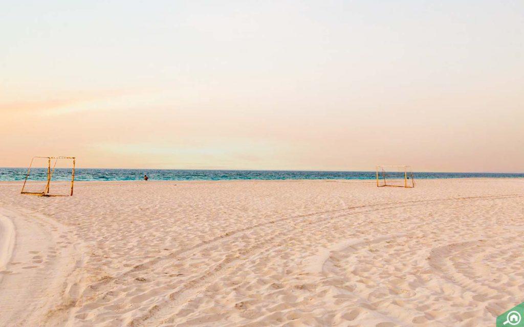 Saadiyat Beach things to do