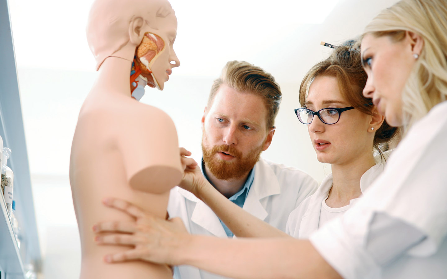 Anatomy students studying an artficial body