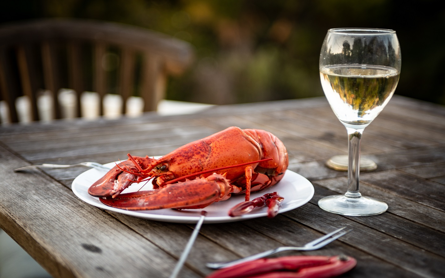 Lobster dinner in a plate