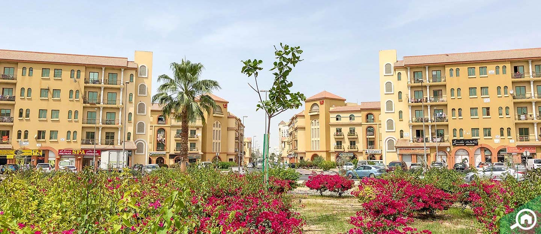 buy cheap properties in Dubai