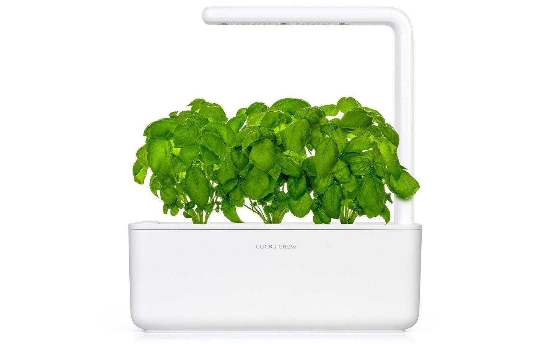 تؤمن أوعية نباتات كليك آند جرو سهولة زراعة النباتات في المنزل