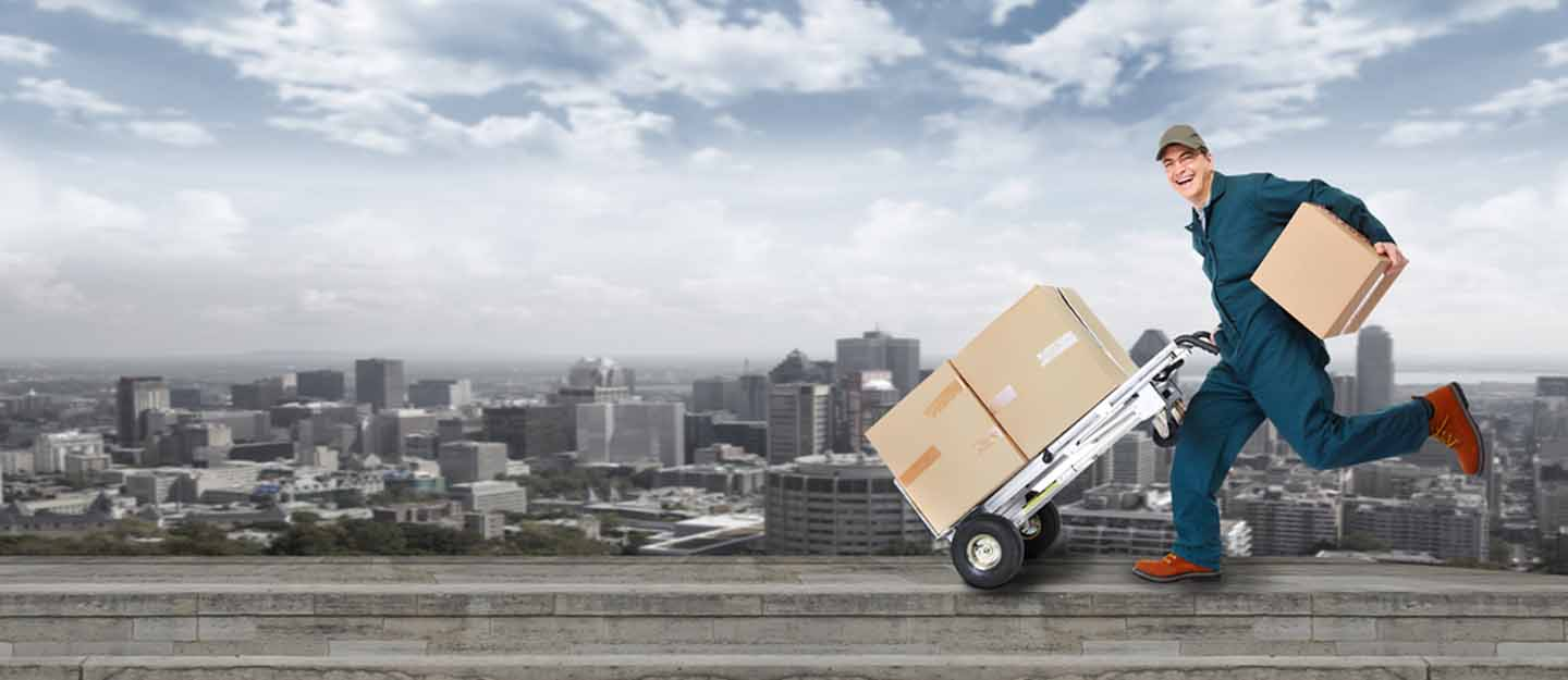 Courier Services in Dubai: DTDC, Emirates Post, Century Express ...