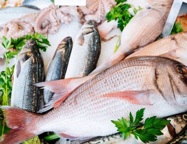 اسواق السمك في الامارات