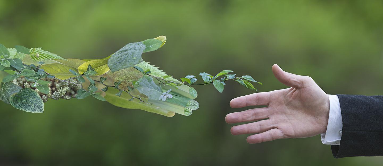 القمة العالمية للاقتصاد الأخضر 2019 - فوائد - أهداف - مشاريع   ماي بيوت