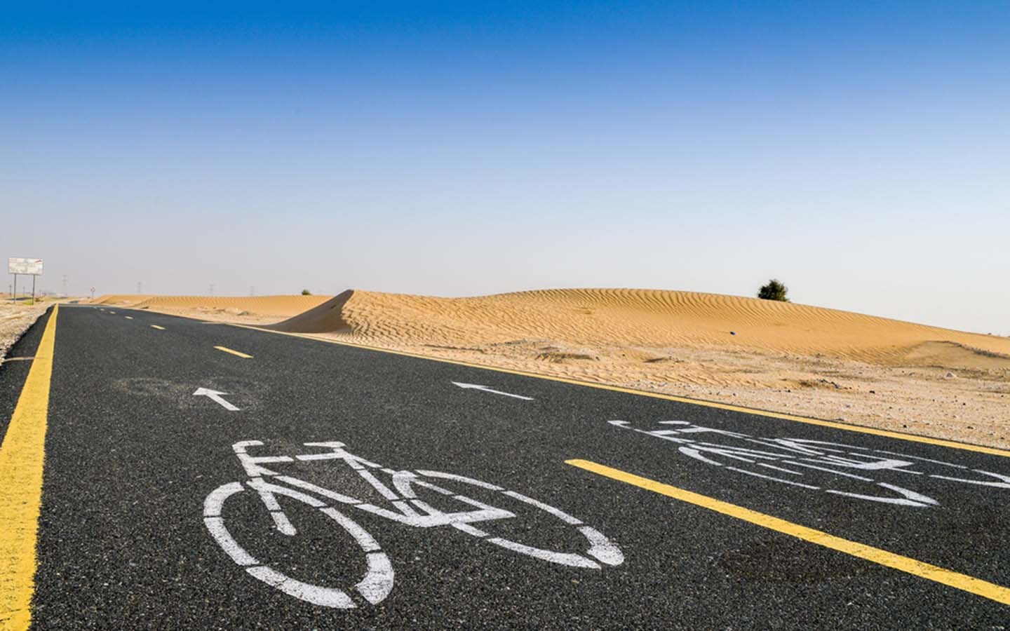 A view of Al Qudra Cycle Track