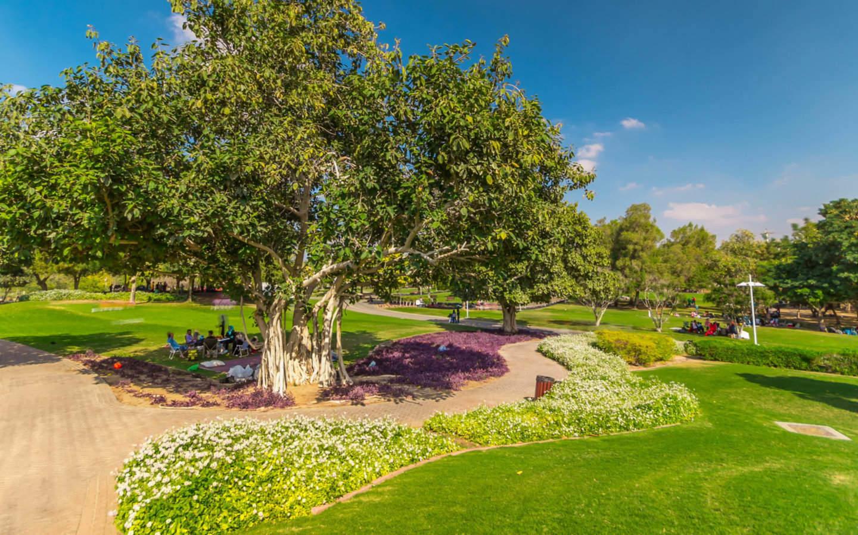 Beautiful landscaping at Mushrif Park in Dubai