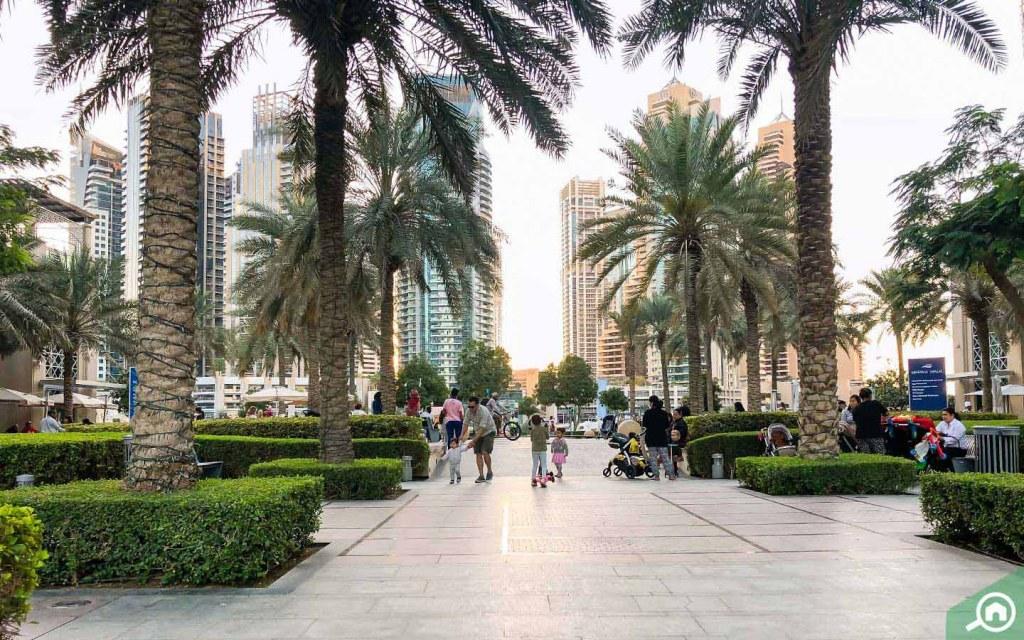 A view of Dubai Marina Walk