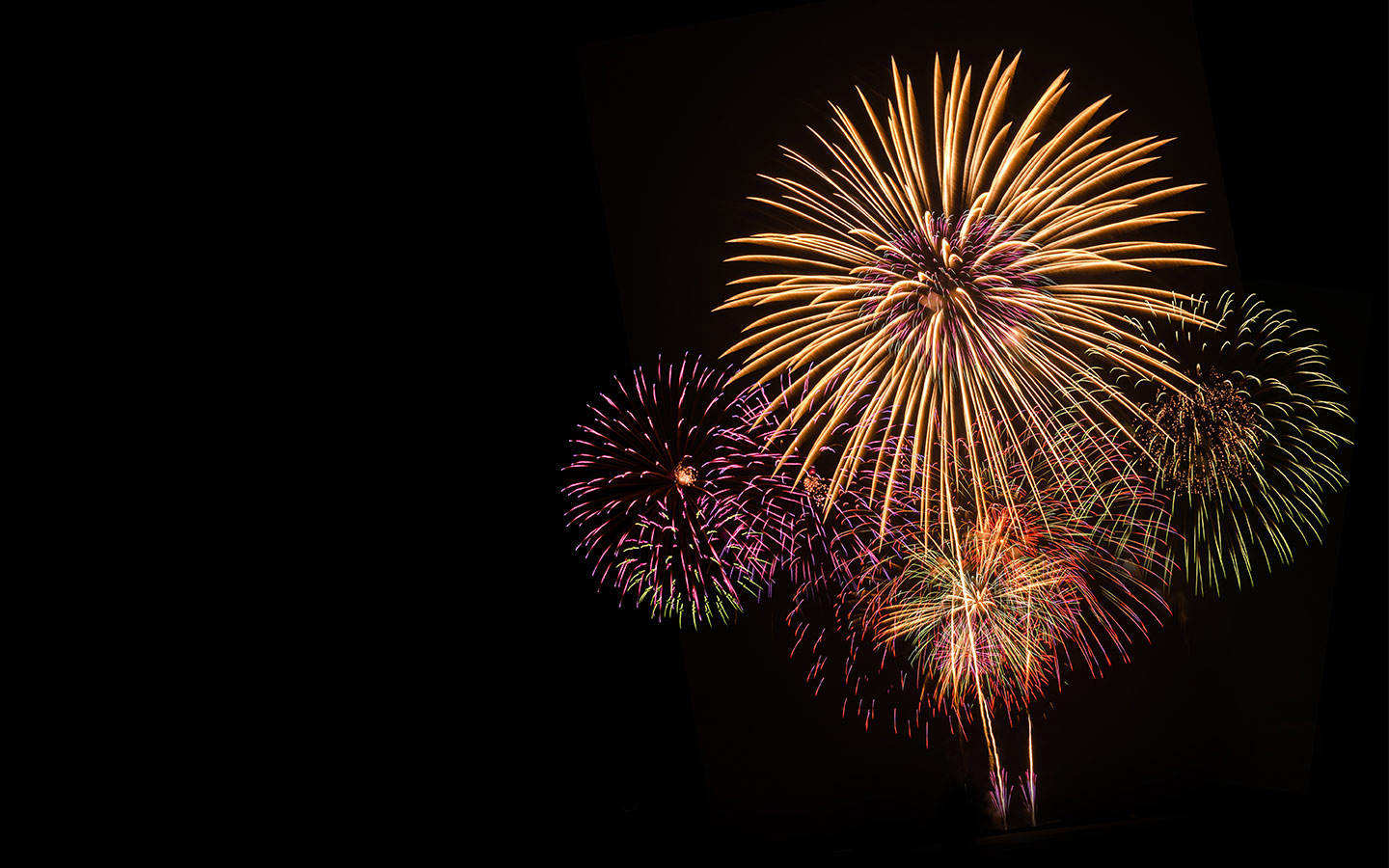 View of fireworks displays in the sky