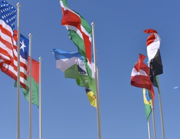 Consulate Flags