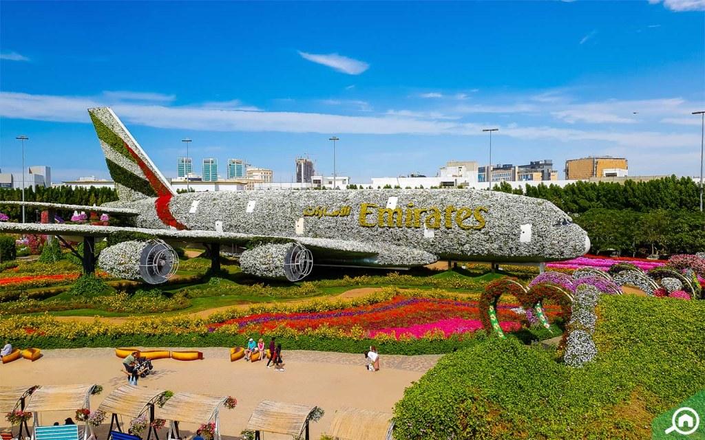 Floral Emirates A380 Model in Dubai Miracle Garden.