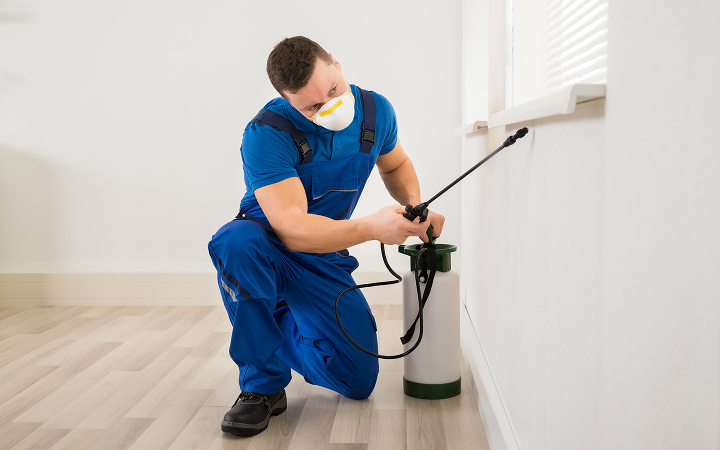 Person carrying out pest control at a private home