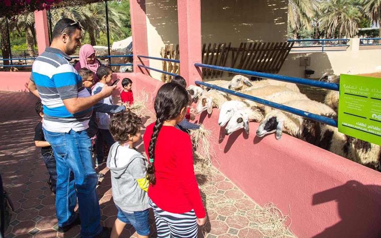 Children's Farm at Sharjah Desert Park
