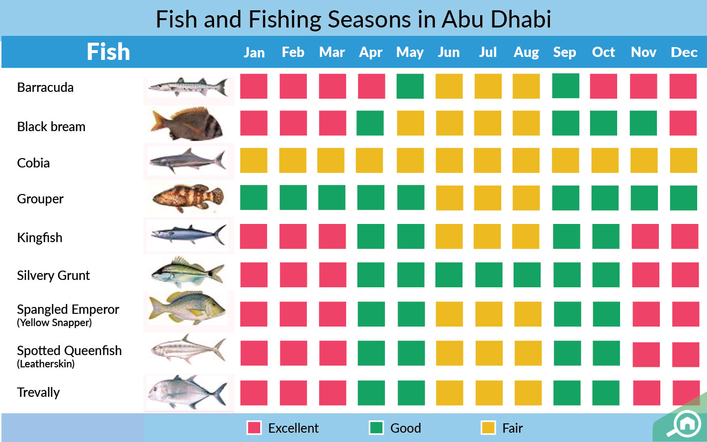A pictorial representation of fish you can catch in a particular fishing season in Abu Dhabi