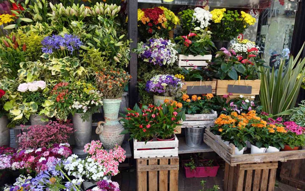 There are many flower shops in Abu Dhabi