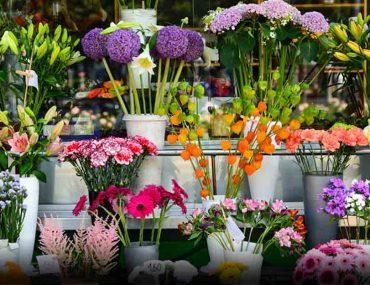 flower shop in Abu Dhabi