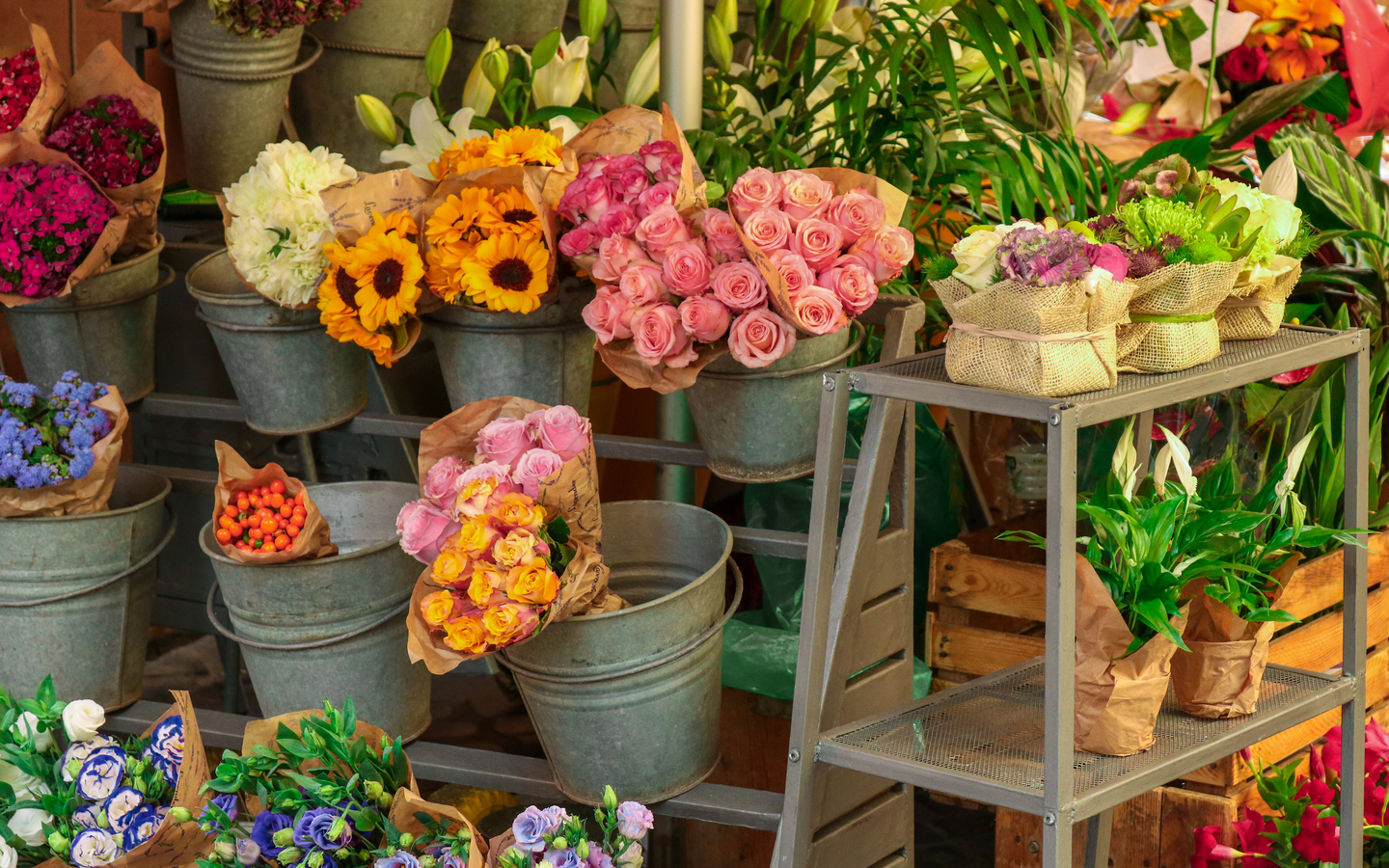 Flowers on display at a shop