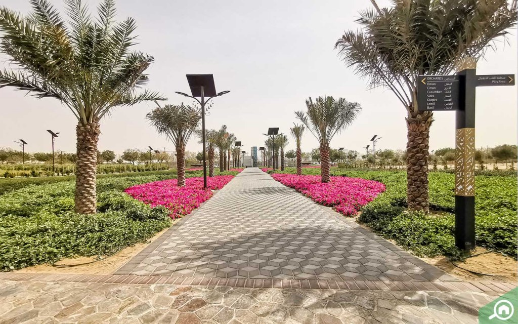 Gardens with trees and flowers in Holy Quran Park Dubai