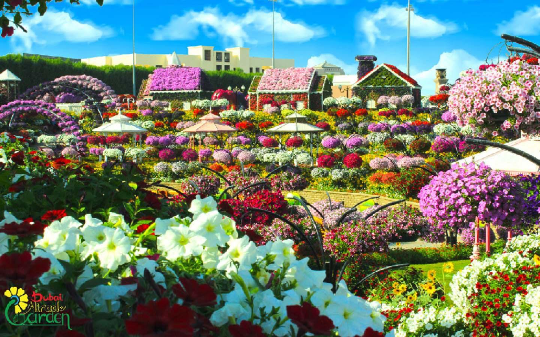 Gazebos at the Dubai Miracle Garden