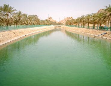 View of Green Mubazzarah Lake