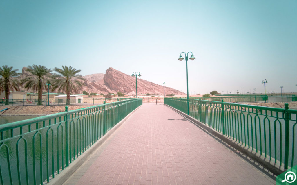 Green Mubazzarah Park in Abu Dhabi