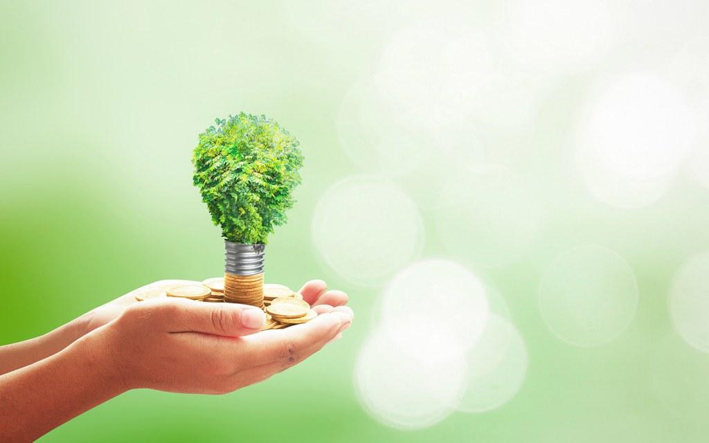 الاقتصاد الاخضر في الامارات - المدن المستدامة - الوقود النظيف - إطلاق المبادرات   ماي بيوت