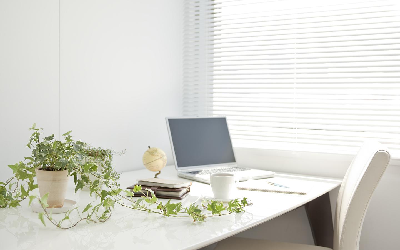 من المعروف بأن وجود النباتات في المنزل يؤثر إيجابياً على الصحة النفسية للفرد ومزاجه طوال اليوم