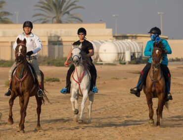 Horse riding in the UAE